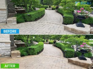 sealall-projects-before-after-11